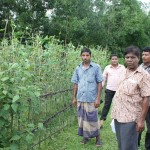 New crops with local farmers